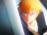 Bleach Saison 4 Box 14 - DVD