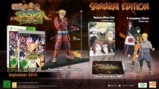 Naruto Shippuden Ultimate Ninja Storm Revolution Collector - PS3