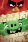 ANGRY BIRDS - Poster 61X91 - Raah