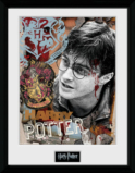 HARRY POTTER - Collector Print 30X40 - Harry Potter